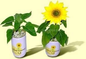 Céges logózott konzerv virág