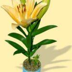 Emblémázott egyedi konzerv virág