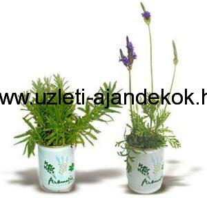 Reklám konzerv virágok